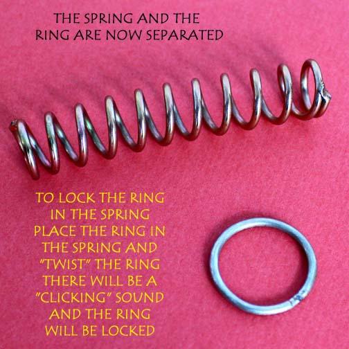 Ring On Spring