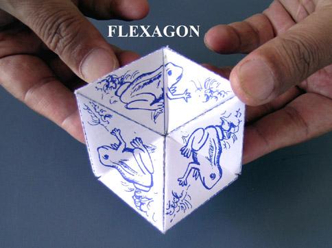 Flexagon | YPN