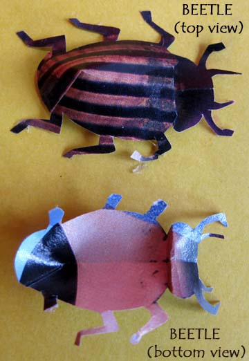 bug paper toys science from trash 1178